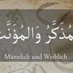 Weiblich und Männlich – اَلْمُؤَنَّثُ واَلْمُذَكَّرُ